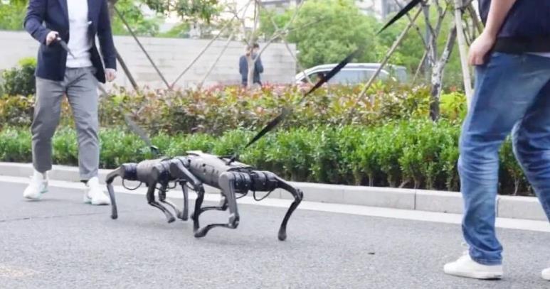 Unitree A1 Laufroboter Gassi Hunde Leine