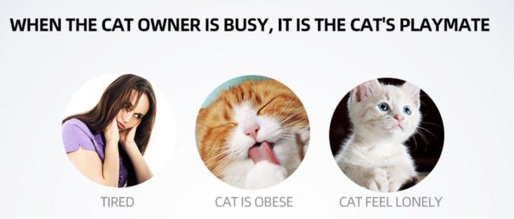 Automatischer Katzenlaser Gruende