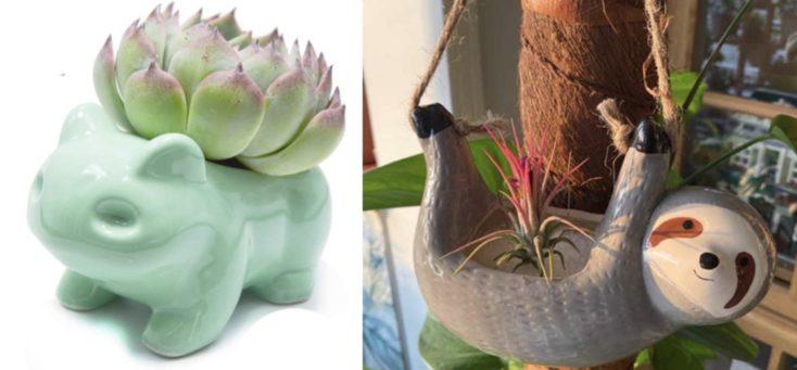 Blumentopf gruen Faultier