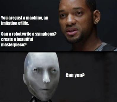 iRobot Meme Saugroboter Test