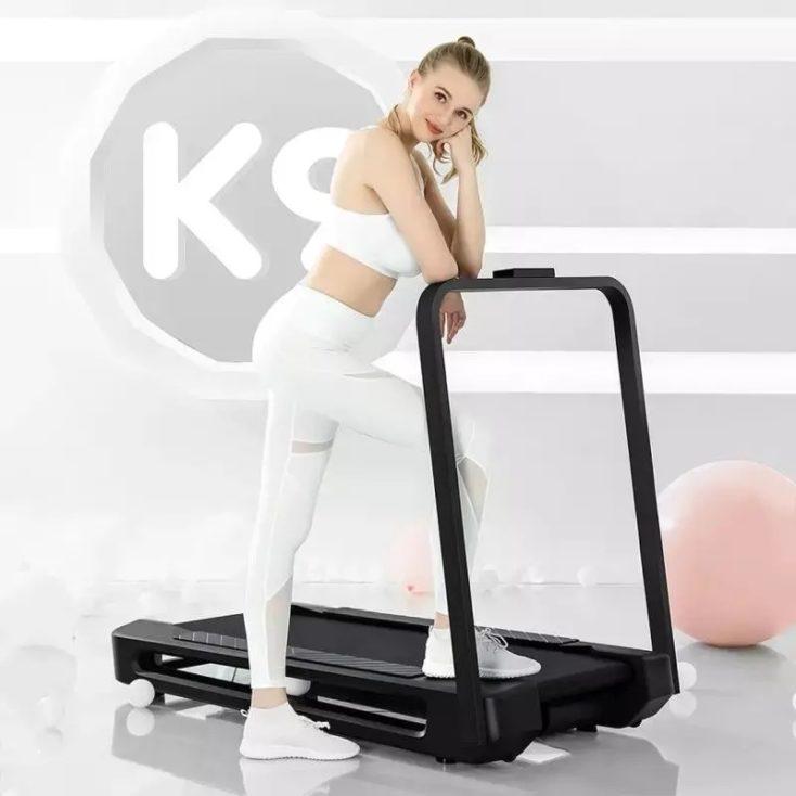 WalkingPad K9 mit Model
