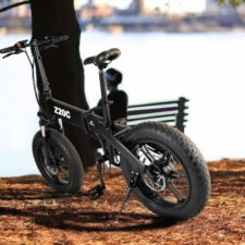 ADO Z20C E-Bike am See 731x731
