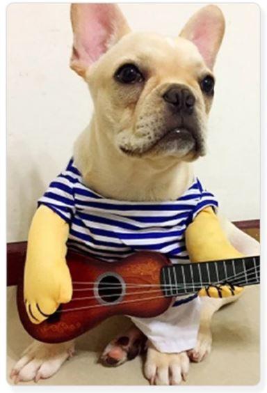 Gitarrenspieler Hunde Kostuem 2