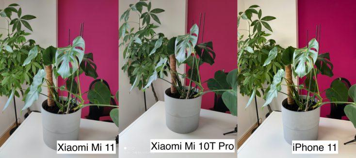Xiaomi Mi 11 Testfoto Hauptkamera vs Mi 10T Pro vs iPhone 11