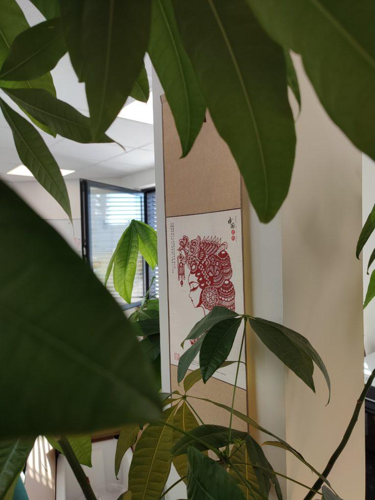 Redmi Note 10 Pro Hauptkamera Testfoto Farben