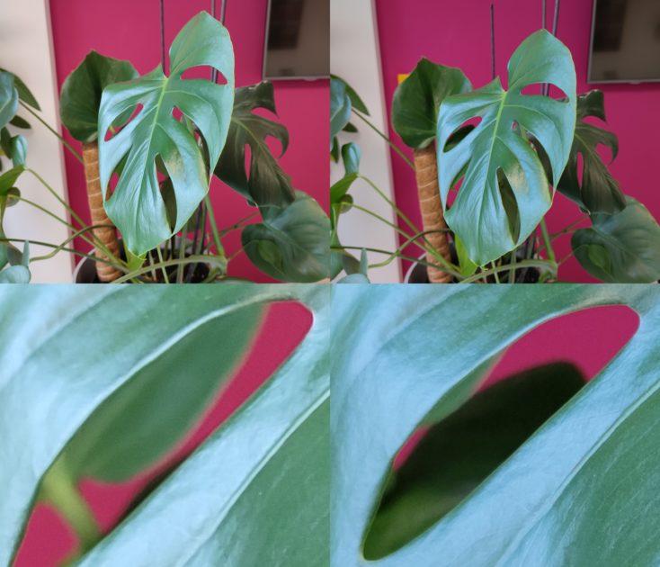 Redmi Note 10 Pro Testfoto Schaerfe Vergleich Mi 11 Vergleich