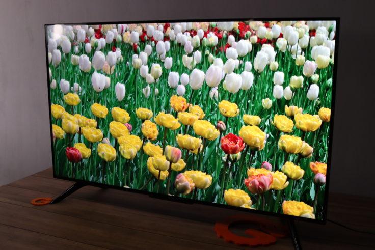 Xiaomi Mi TV P1 Fernseher Blumen Beispiel