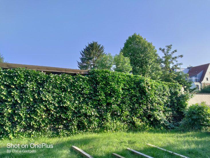 OnePlus Nord CE 5G Garten