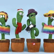 Tanzender Kaktus