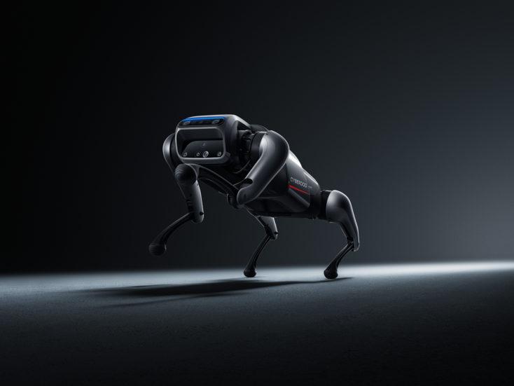 Xiaomi CyberDog Roboter Füße hoch
