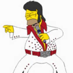Profilbild von Elvis