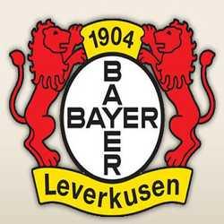 Profilbild von BayerBest