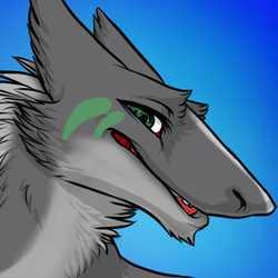 Profilbild von Tsume