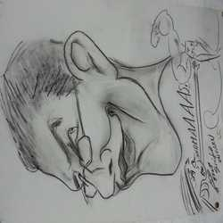 Profilbild von thomawa69