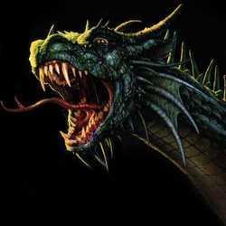 Profilbild von Drache